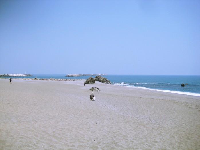 06 Katsurahama-beach
