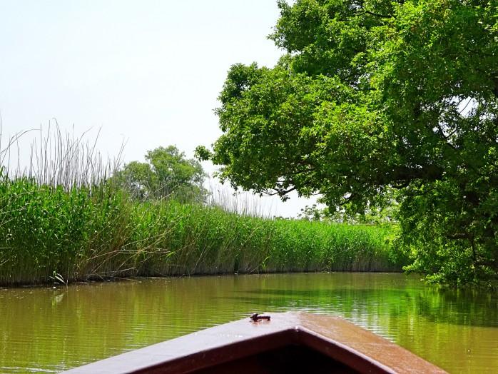 01 Lakeside district boat tour of Ohomihachiman